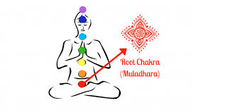Simple Ways To Heal Your Root Chakra - The Foundation of Your Life - image Root-Chakra-Muladhara on https://www.rudrakshabenefits.com